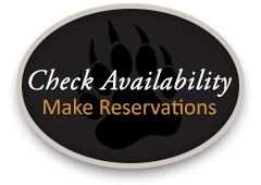 Make Online Reservation