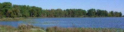 Prettiest 22 acre fishing spot in the Arkansas Ozarks.